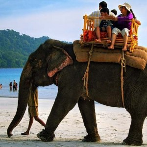 Andaman elephant-beach-1