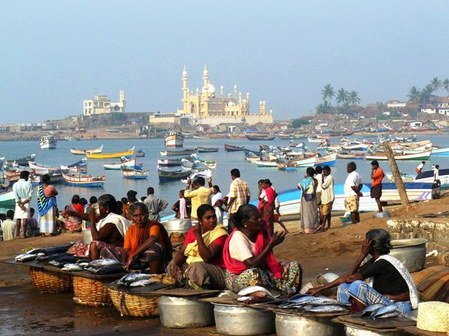 Vizhinjam Fishing Village KeralaToursGlobal1